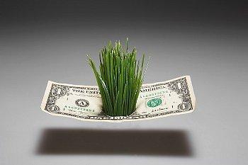 Delaware condo association Tax Return